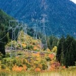 Vegetation Studies in Power-line Rights-of-way (ROWs)